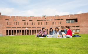 College students studying on campus lawn